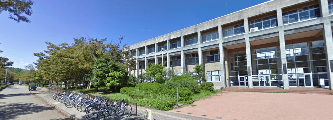 新潟大学 偏差値