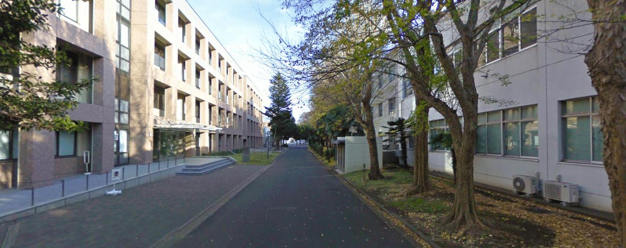 千葉 大学 法 政経 学部 入試
